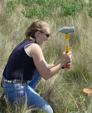 Amanda Gearhardt pounds a range monitoring marker into the ground for easy reference to find the photo point in the future. It's also helpful to GPS the location and keep that information for future reference.