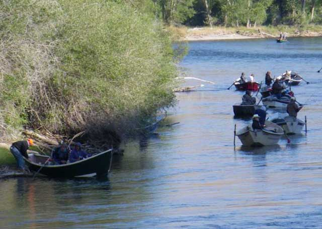 Anglers flock to the Salmon River during a recent salmon fishing season. Efforts to restore salmon and steelhead habitat in the Upper Salmon Basin is expected to increase fish populations and lead to more fishing seasons.