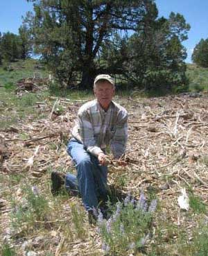 Art Talsma of The Nature Conservancy shows how native plants -- bunchgrasses and wildflowers -- bounce back quickly after junipers have been removed