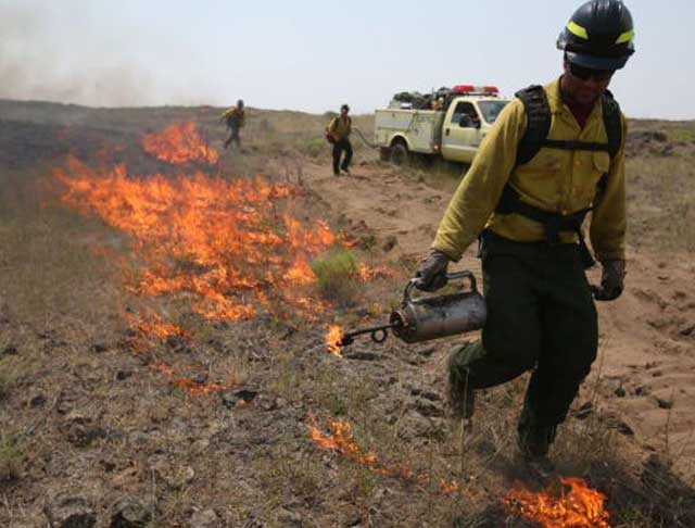 Fire breaks allow the BLM to set backburns and stop wildfires from spreading on that flank.