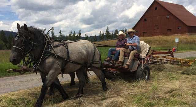 Harriman State Park keeps the history alive-min