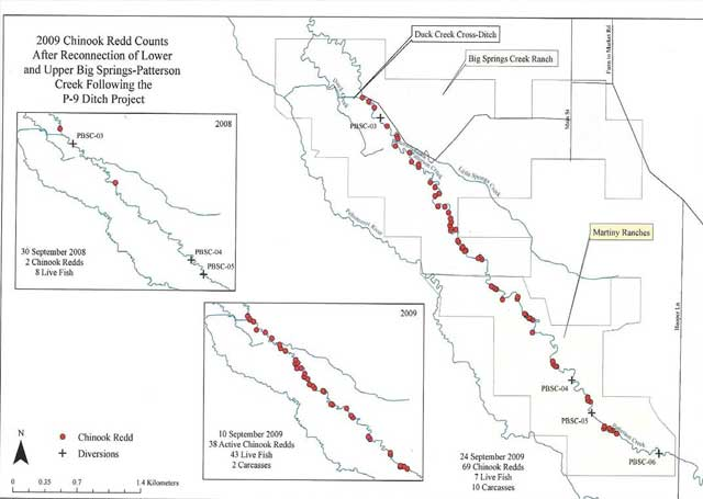 Idaho Department of Fish and Game redd counts (shown in red) show the distribution of salmon spawning beds in the fall of 2009. Below, the old P-9 irrigation ditch.