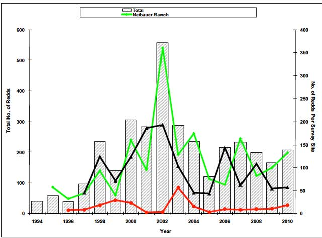 Rainbow trout spawning counts (IDFG) show the progress being made in the Upper Salmon River Basin since the early 1990s.