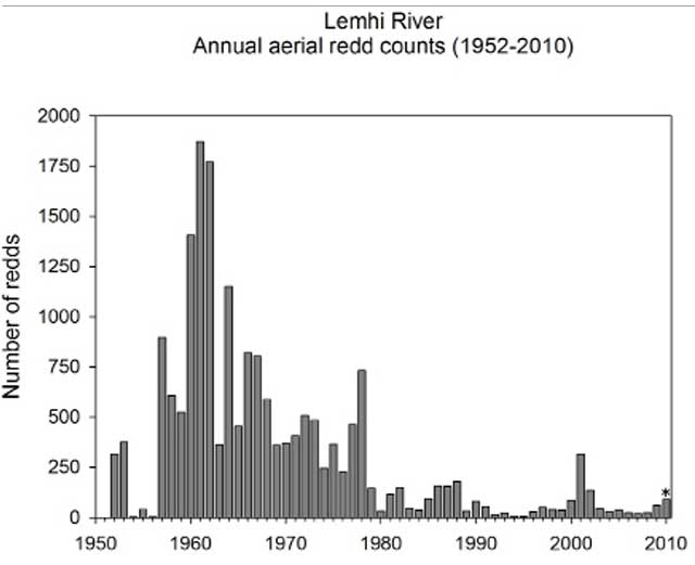 Redd counts for endangered salmon on the Lemhi River show progress since the counts fell into the single digits in the mid-1990s. Many other factors affect survival rates for the ocean-going fish, including federal dams and reservoirs on the lower Snake and Columbia Rivers, ocean conditions and commerical and tribal fishing.