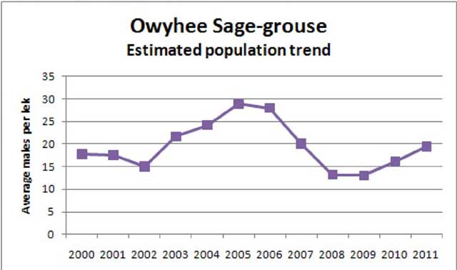 Sage-grouse numbers seem to be rebounding in recent years in the Owyhees.