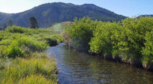 Located near the Salmon River headwaters,