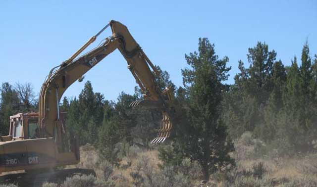 The BLM and Owyhee County ranchers work to prevent the spread of juniper trees in the shrub-steppe ecosystem. Lack of natural fire has led to the expansion of juniper trees across the landscape, reducing wildlife habitat and grass for livestock.