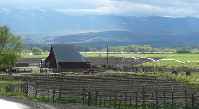 The SS Cattle Co. barn and corrals, with Sturgill Peak in the background