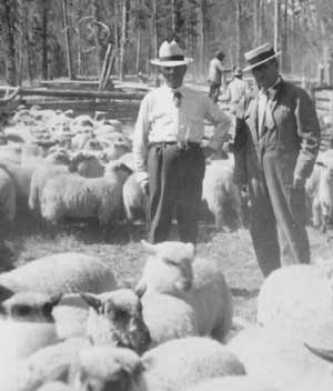 Sam Burks, left, and John Thomas check on the sheep in the early days of the Flat Top Ranch.