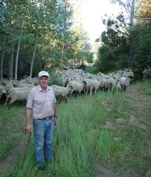 "Etcheverry likes his sheep range in Eastern Idaho. ""Where the feed is, there's no better anywhere,"" he says. Photo courtesy of Where Food Comes From®"