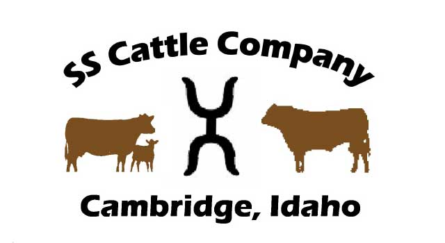 SS Cattle Company