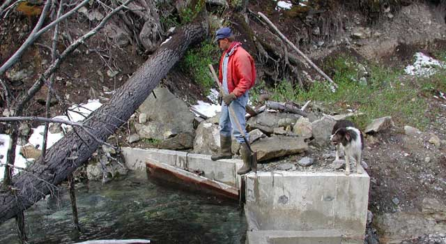 Steve Smith removes debris from the Arentson Creek diversion in the Lost River Range. The Smiths also have water rights on Rock Creek and Cedar Creek
