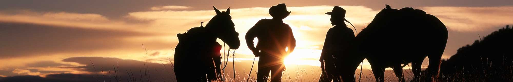 sunset cowboys