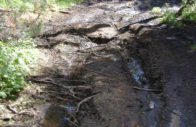 Off-trail riding by ATV's is an issue on the crest of the Boise Foothills