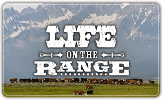 Life on the Range
